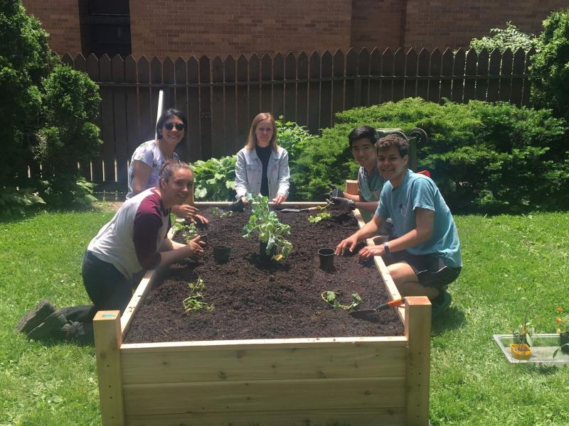 students working in raised garden bed