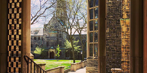 the Trinity Quad in summer